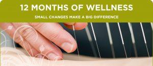 12Wellness_4_SleepAcupuncture_Header